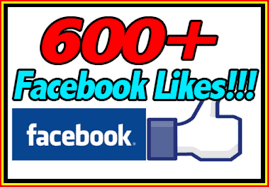 We have over 600 Facebook Likes!
