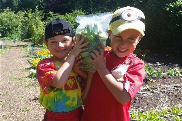 Kids growing organic lettuce