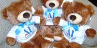 ALRSD_Bears