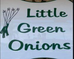 little Green Onions