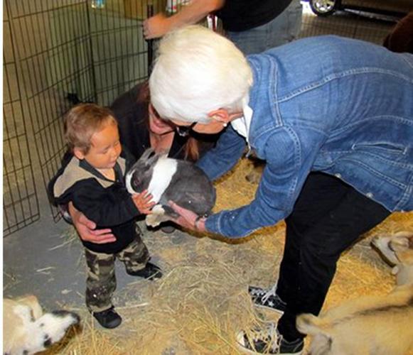 2015_FSH_Zoo_Boy_Bunny_volunteer