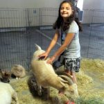 Assist-a-Shelter Petting Zoo at Family Supportive Housing