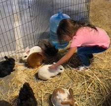 Petting Zoo at Family Supportive Housing