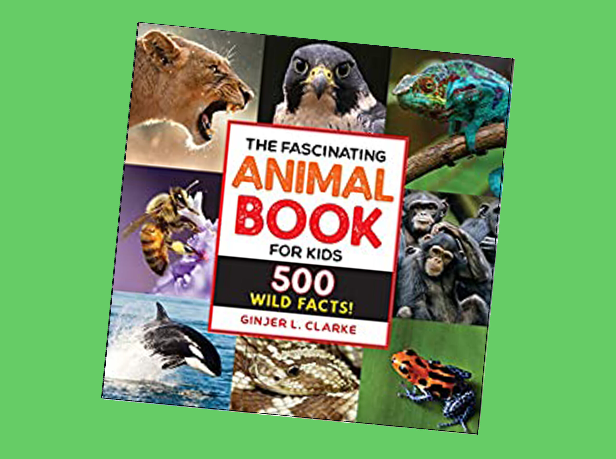 Fascinating Animal Book for Kids