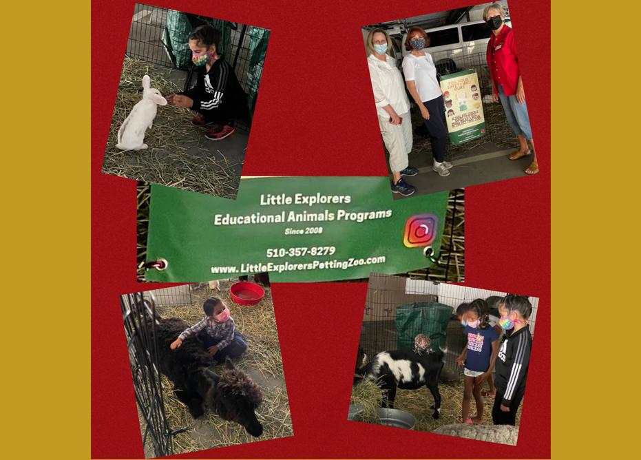 2021 Fall FSH Petting Zoo Photos