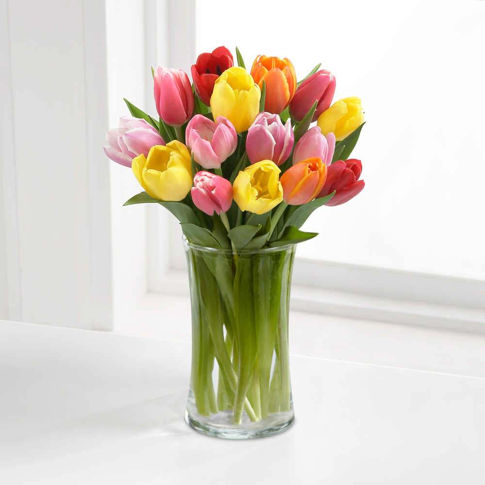 Vase of tulips gallery vases design picture tulip sale assistance league southwest washington reviewsmspy floridaeventfo Gallery